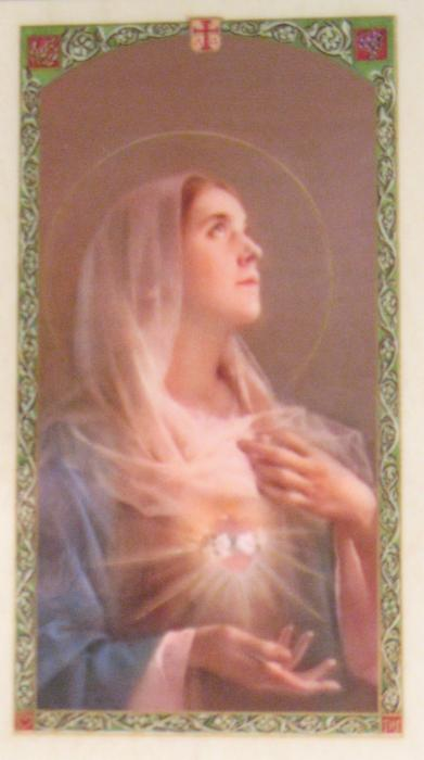 A Prayer of The Afflicted to Mary -  Laminated Prayercard