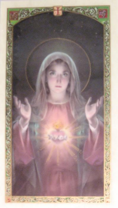 Immaculate Heart of Mary Laminated Prayercard - Immaculate Virgin