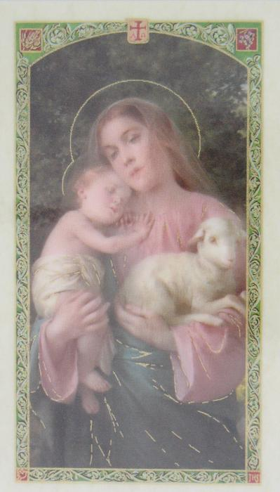 Invocations to Mary Laminated Prayer Card