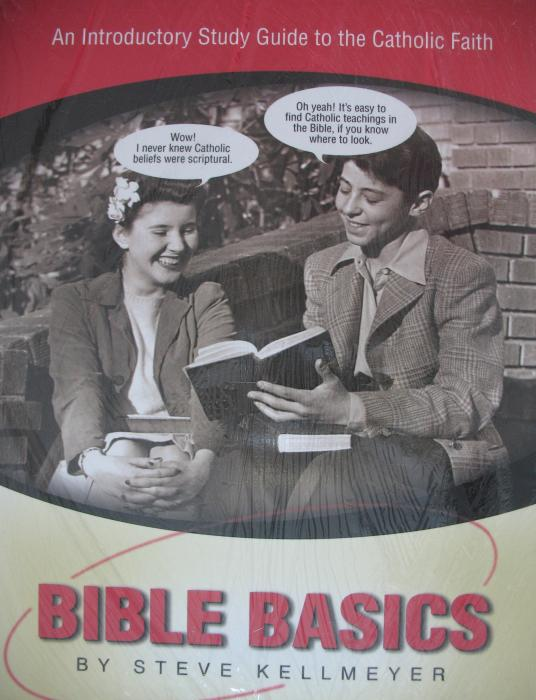 Bible Basics : An Introductory Study Guide to the Catholic Faith