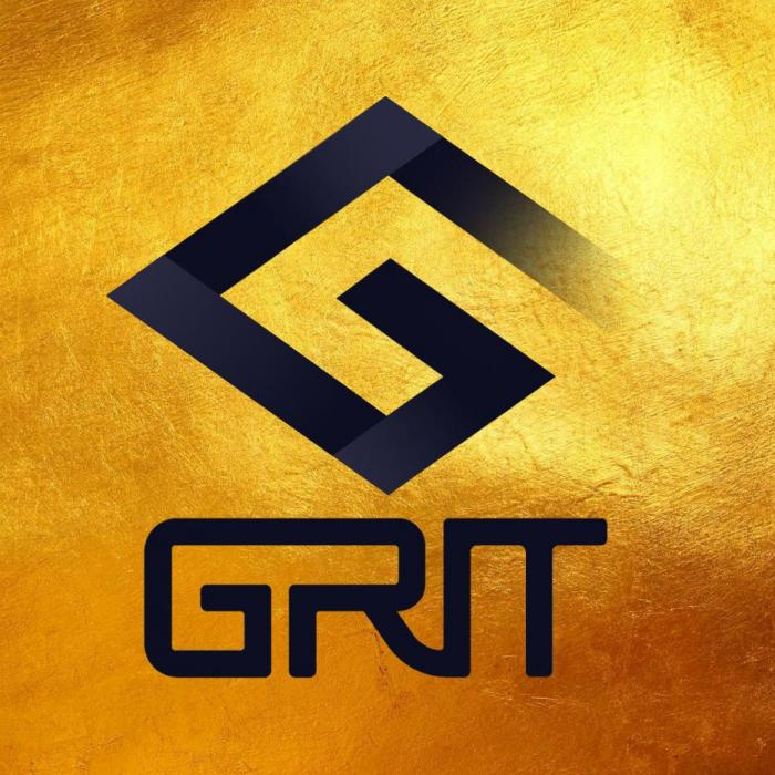 GRIT Video Training System